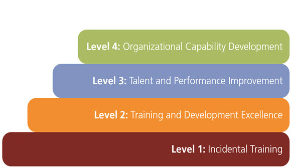 4 levels of a successful learning organization