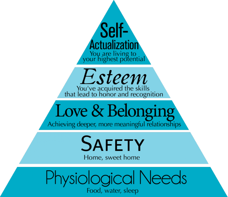 Image result for maslow's hierarchy of needs