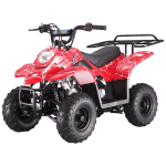 Tao Tao 110cc Gas ATV for Kids