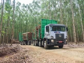 caminhão madeireiro Constellation 31 390