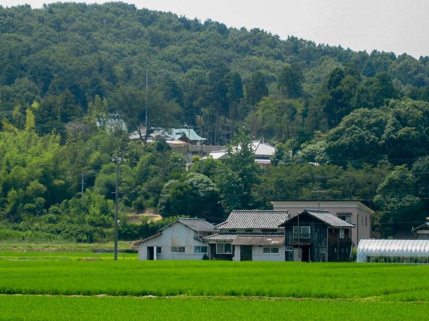 安仁神社:遠景