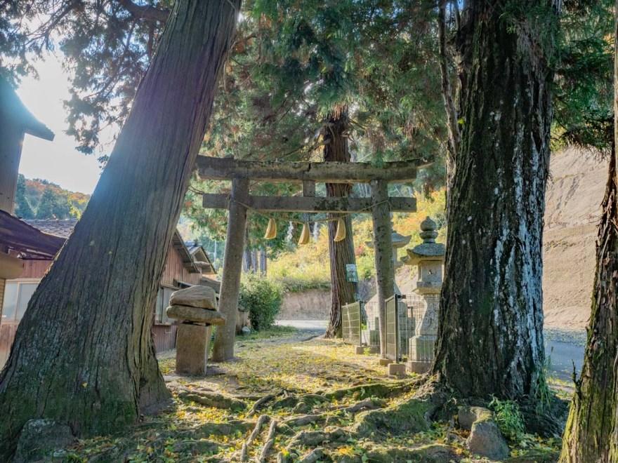 石上布都魂神社:参道の鳥居
