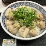 吉野家・夏季限定!さっぱり塩ダレがうまい「ねぎ塩鶏丼」