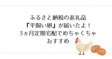 ふるさと納税の返礼品 『平飼い卵』が届いたよ! 3か月 (1)