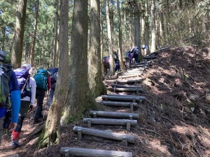 尼ヶ岳へ200mの階段 この登りもタフです。