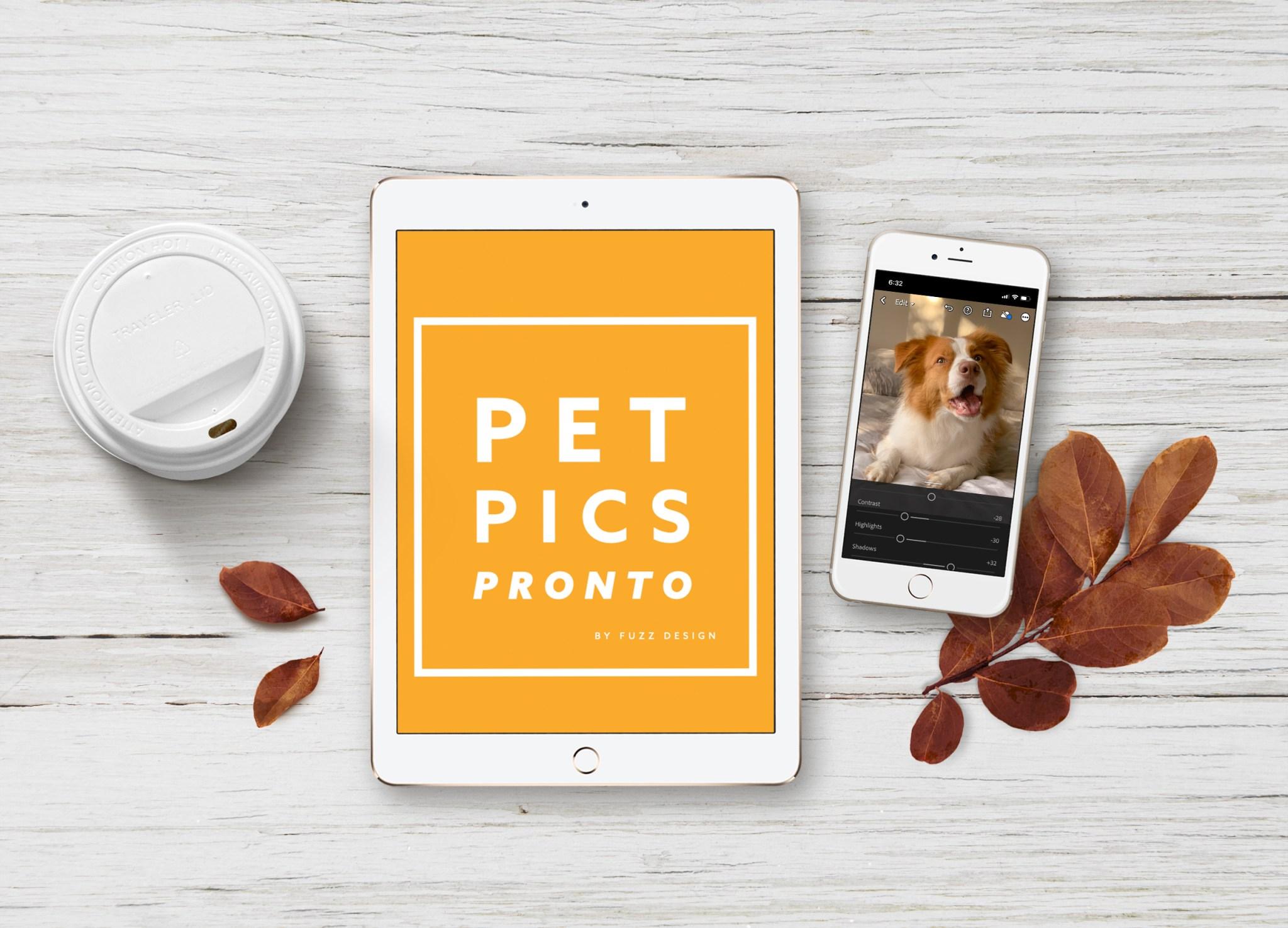 pet_photo_course image iphone tablet