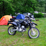 White Pines Campground DRZ