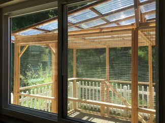 catio from window 2016-05-17 12.13.20