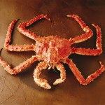 Bristol Bay's Red King Crab season coming to a close