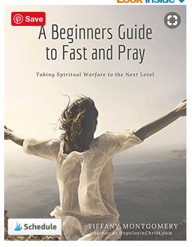 Review of A Beginners Guide to Fast and Pray: Taking Spiritual Warfare to the Next Level by Tiffany Montgomery