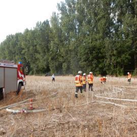 Flächenbrandbekämpfung mit dem TLF Bienrode