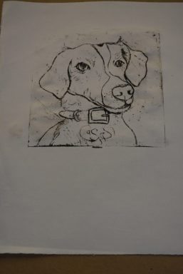 A black and white print of a dog wearing its collar.