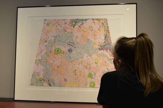 A visitor looks at Nancy Graves' lithograph, which, from far away, appears to be an abstract work made up of colored dots. Upon closer inspection, it shows texture and specific areas.