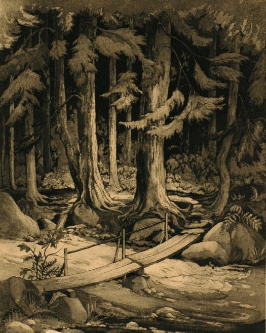 An etching of the Adirondack trail, this piece includes 19 tones of grey to create the grey/brown/black/green/white palette. It shows a grove of trees, with darkness falling in the background as you get closer into the wood. In the foreground, wooden planks span a fast moving stream to help the unseen hiker cross to the other side.