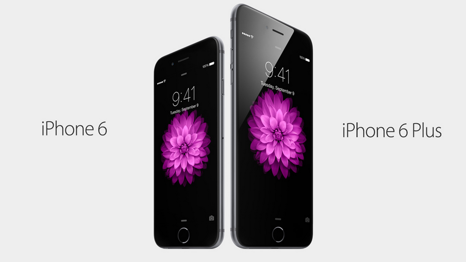 The iPhone 6 6 A good step in the right direction FWNED