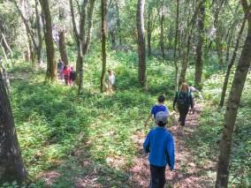 Kids on Loop Trail-2
