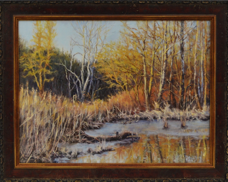 Almost Spring at the Beaver Marsh