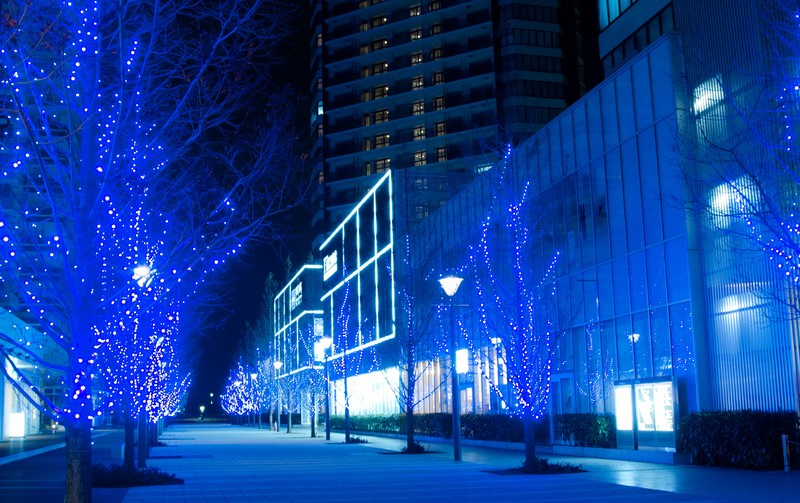 夜のイルミネーション冬到来