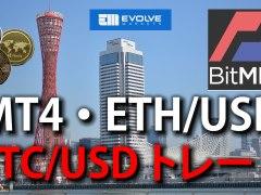 bitmex evolve.markets MT4
