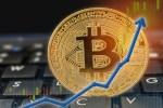 【仮想通貨を学ぶ動画】第3章(1):価値が300倍になった通貨を見つけるための原理原則!これでもうしょうもない草通貨に振り回されないですみます!