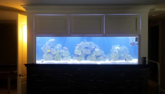 New Aqua FX Custom Designed Reef Tank