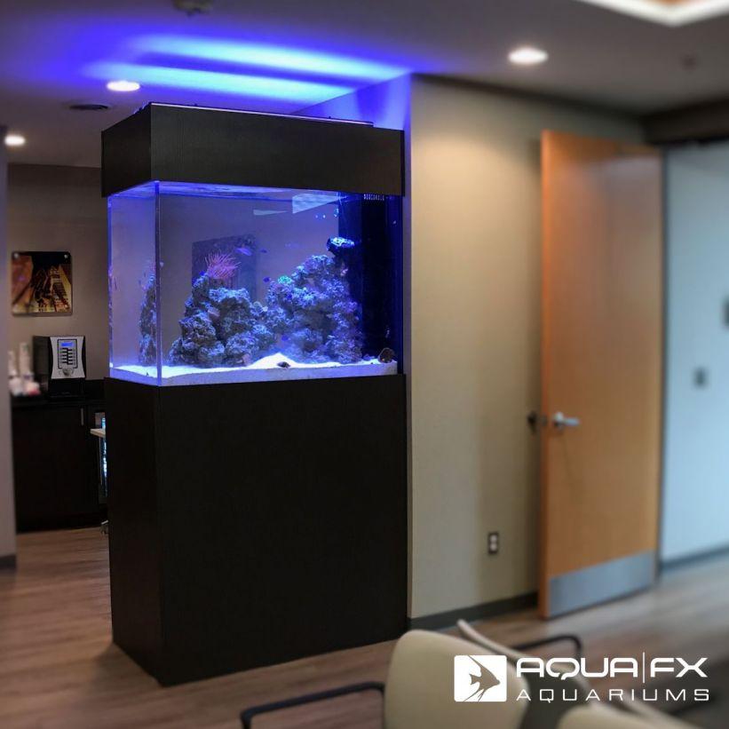 Aqua FX Designed and Installed Living Reef