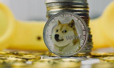 shiba inu coin price chart
