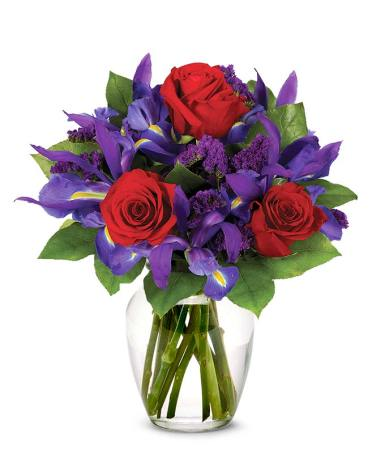 Ruby Rose Bouquet at From You Flowers Red roses and blue irises