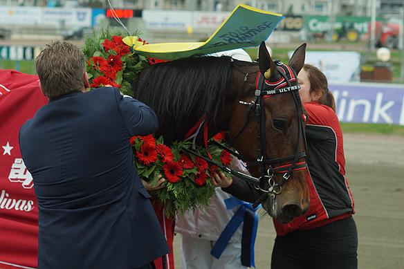 Hästen Ultra Bright får här en krans efter segern i Lovely Godivas Minne. Foto: Peter Ahlborg