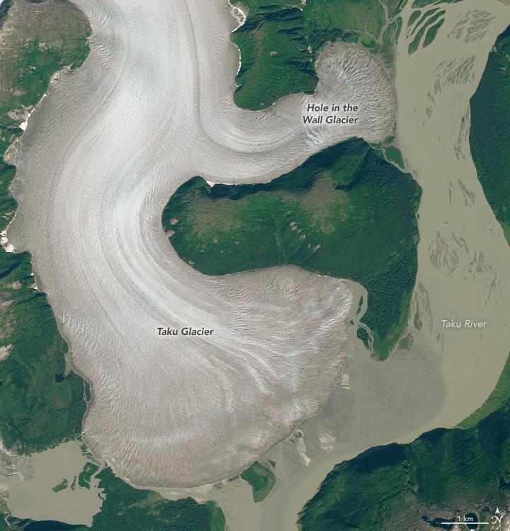 Taku Glacier in 2014