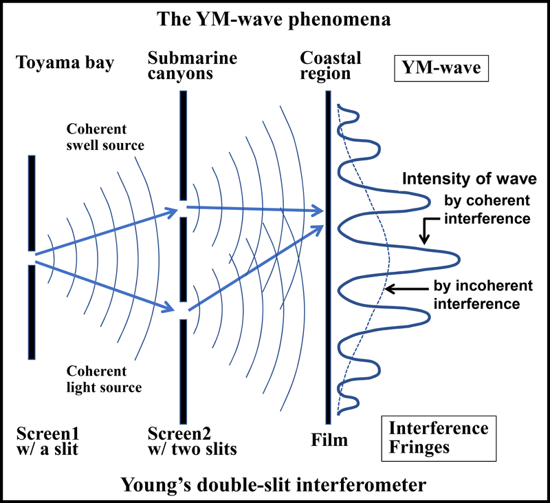 Diagram illustrating the similarity of the YM-wave phenomenon to Young's double-slit experiment. By H. Tamura et al.