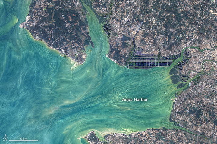 False-color satellite image of Anpu Harbor.