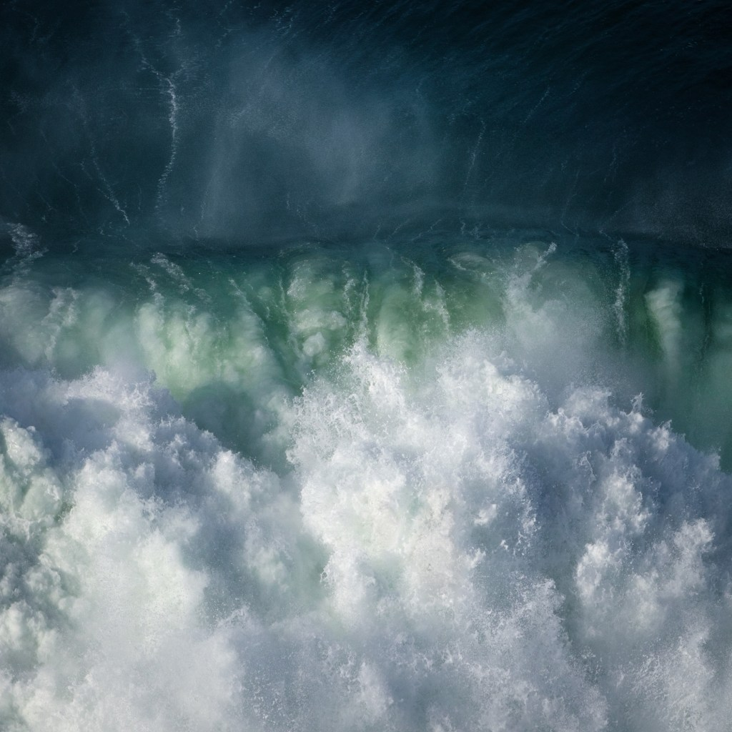 """Surf Study"" by Rachael Talibart."