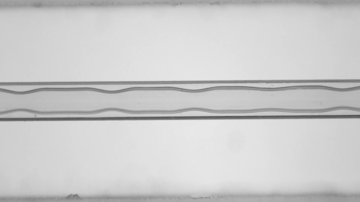 A wavy film forms on the interior of a capillary tube.