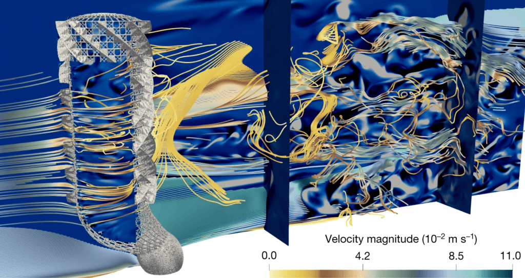 Numerical simulation of flow through and around the sea sponge model, showing streaklines of the flow colored by velocity magnitude.