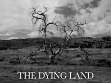 13_The_Dying_Land copy