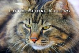 15_Little_Serial_Killers copy