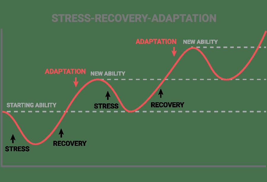 stress-recovery-adaption