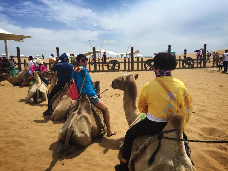 フフホトで中国人とラクダ体験