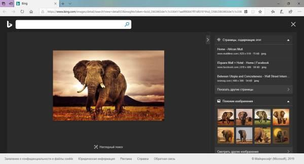 Приложение Microsoft «Фотографии» для Windows 10 получает ...