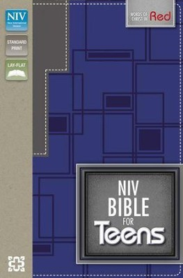 NIV Bible for Teens, Blue  -     By: Zondervan