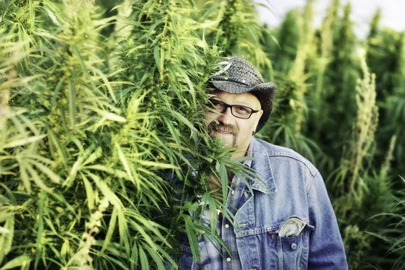 Marijuana Cultivator Posing With Plants Cannabis Getty