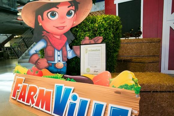 FarmVille display.