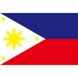 免費向量圖素材下載-菲律賓國旗AI檔 - Ai素材/模板免費下載 - udn部落格