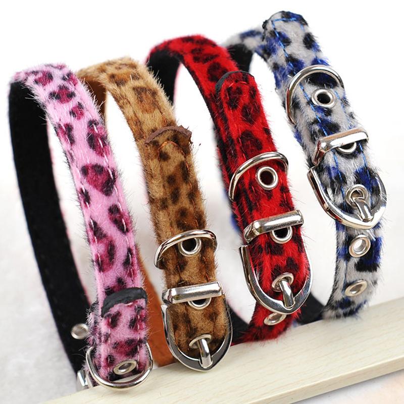 Image result for pet accessories belt