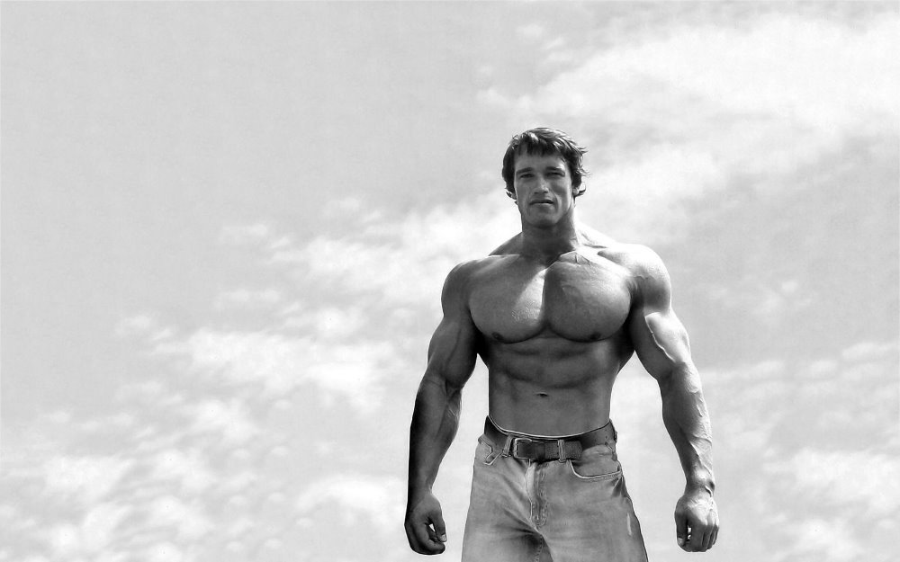 High Quality Schwarzenegger Arnold Posters