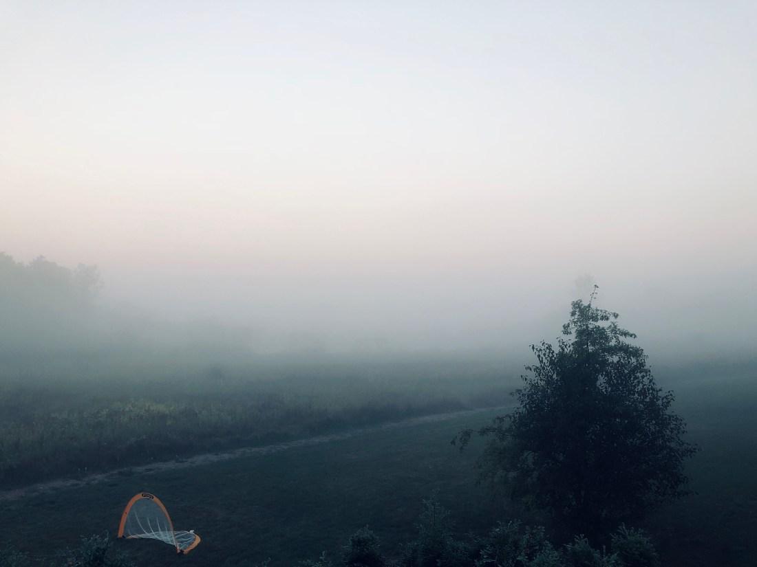 Foggy morning scene