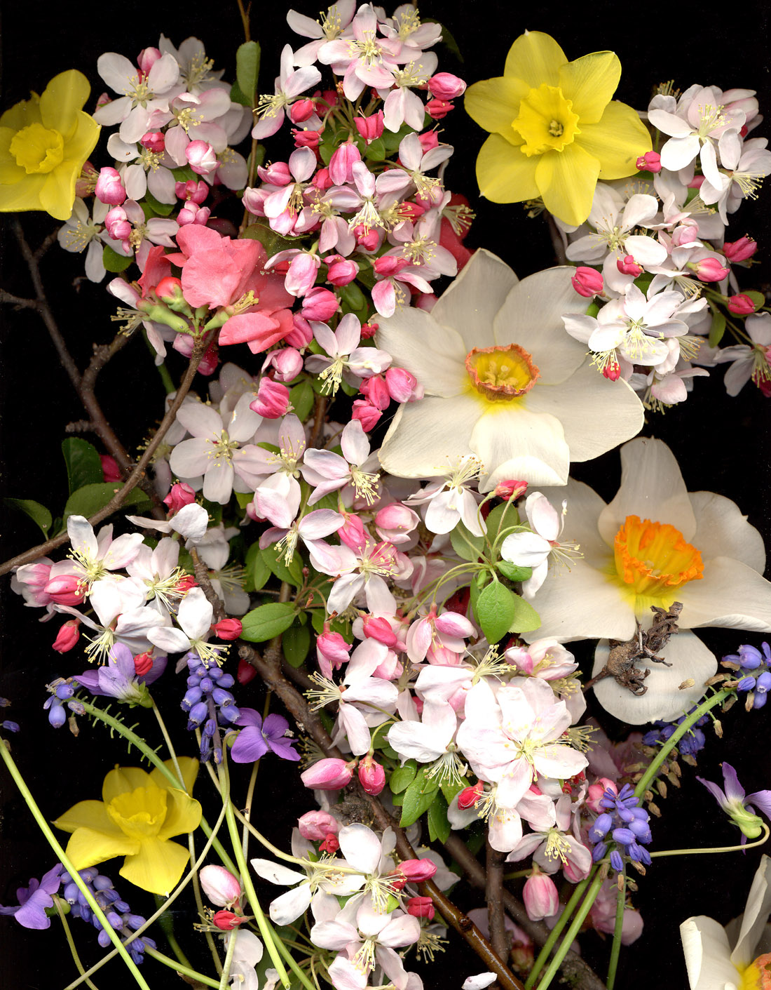 spring_bouquet2