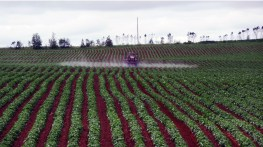 Watering agricultural field