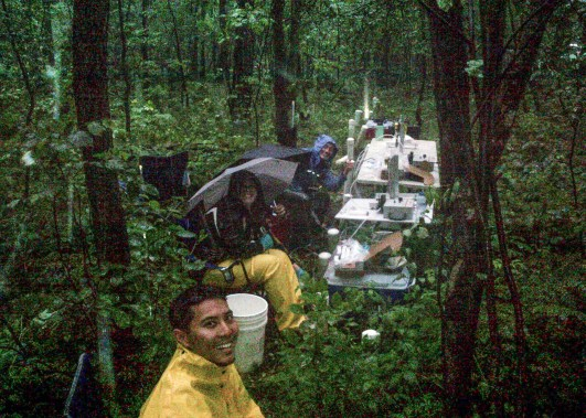 Graduate students getting rained on in the forest